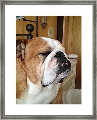 He Fell Asleep Sitting Up Framed Print by Kym Backland