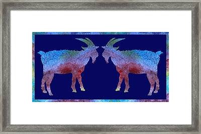 Head To Head Framed Print by Jenny Armitage