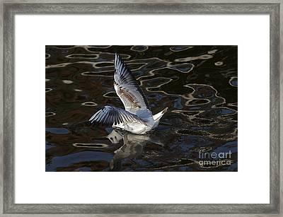 Head Under Water Framed Print by Michal Boubin