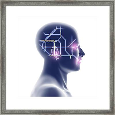 Head With Network Diagram Framed Print by Pasieka