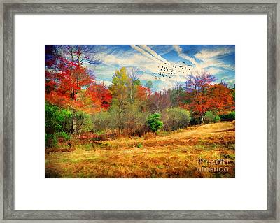 Heading South Framed Print by Darren Fisher
