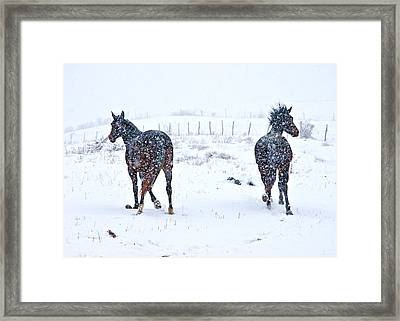 Heading To The Hills Framed Print