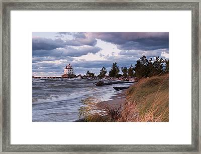 Headlands Beach Grasses Framed Print by At Lands End Photography