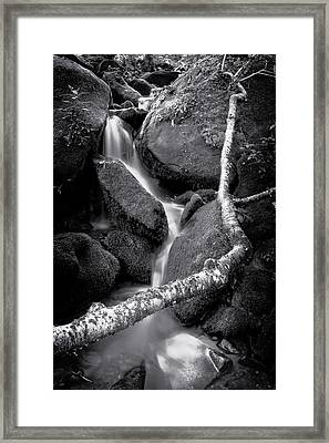 Headwaters Framed Print