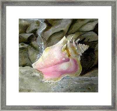 Hear The Ocean Framed Print by Linda McCarthy
