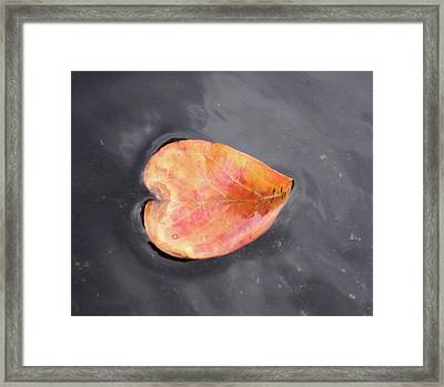 Framed Print featuring the painting Heart - Leaf by Teresa Beyer