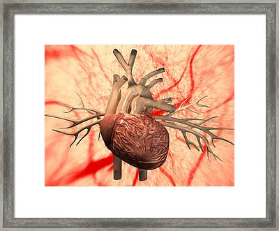 Heart, Computer Artwork Framed Print by Equinox Graphics