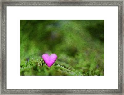Heart In Moss Framed Print by Alexandre Fundone