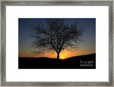 Framed Print featuring the photograph Heart Of The Land by Everett Houser