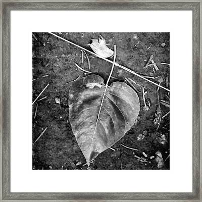 Heart Of The Matter Framed Print by Bonnie Bruno
