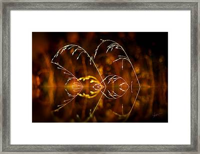 Framed Print featuring the photograph Heartbeat by Vicki Pelham