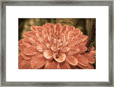 Hearts Abound Framed Print by Terrie Taylor