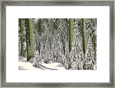 Heavy Snow Framed Print by Garry Gay