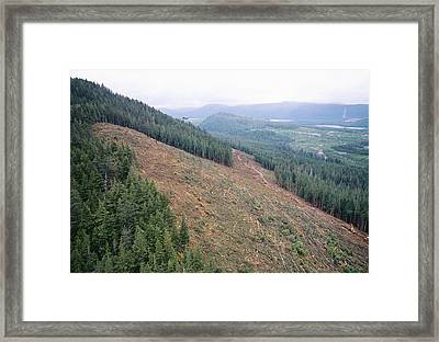 Helicopter Over A Clear-cut Hillside, Canada Framed Print