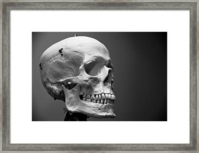 Framed Print featuring the photograph Hello My Friend by Edward Myers