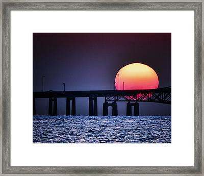 Hello Sun Framed Print by Vicki Jauron