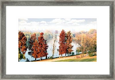Hello World Framed Print by Dan Nita