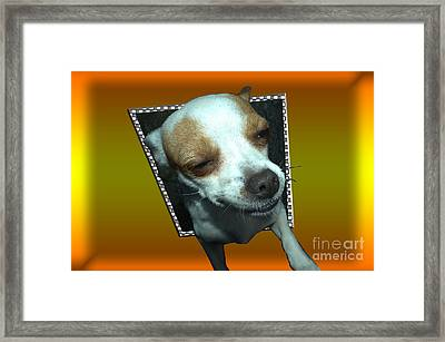 Help I'm Falling Framed Print by Donna Brown