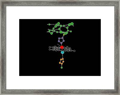 Heme Group In Haemoglobin, Artwork Framed Print by Francis Leroy, Biocosmos
