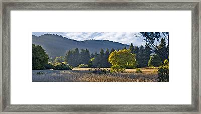 Henry Cowell Meadow Sunset Framed Print by Larry Darnell