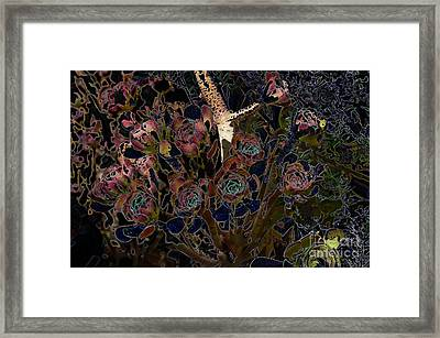 Hens And Chickens Framed Print