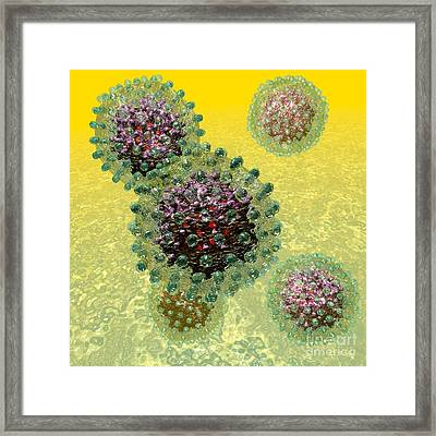 Hepatitis B Virus Particles Framed Print by Russell Kightley