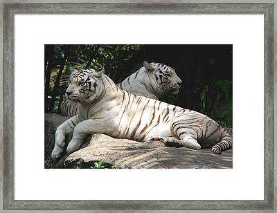 Her Majesties Framed Print
