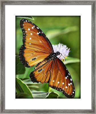 Her Majesty.. The Queen  Framed Print