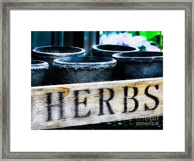 Herb Pots Framed Print by Colleen Kammerer