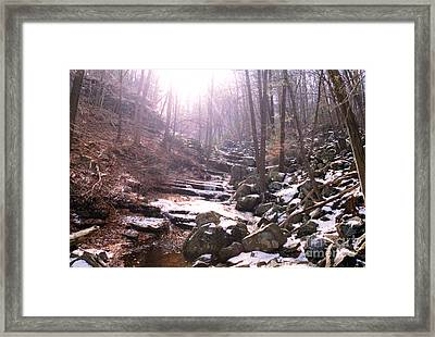 Here Comes The Sun Framed Print by Thomas Luca