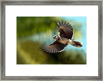 Here I Come Framed Print by Don Durfee