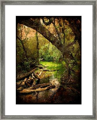 Here There Be Gnomes Framed Print