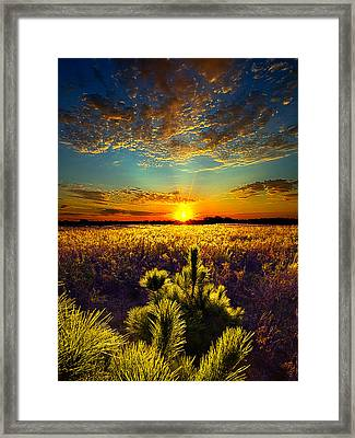 Here With Me Framed Print by Phil Koch