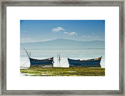 Framed Print featuring the photograph Heron - 2 by Okan YILMAZ