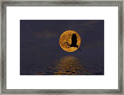 Heron And The Harvest Moon Framed Print