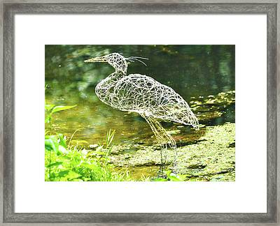 Heron Day Shot At The Pond   Framed Print by Tommy  Urbans