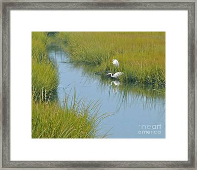 Heron Reflections Framed Print