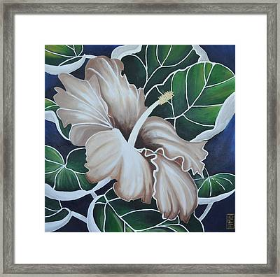 Hibiscus Framed Print by Holly Donohoe