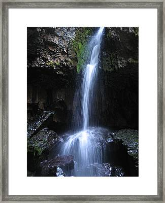 Hidden Beauty Framed Print by Cheryl Perin