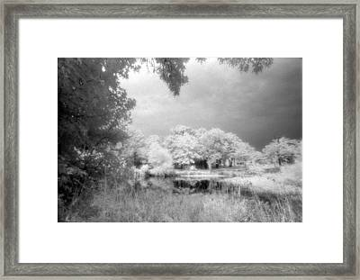 Hidden Cabin Framed Print by Greg Kopriva