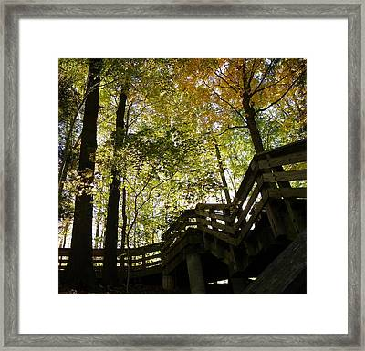 Framed Print featuring the photograph Hidden Hike by Robin Dickinson