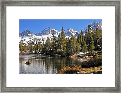 Framed Print featuring the photograph Hidden Jewel by Lynn Bauer