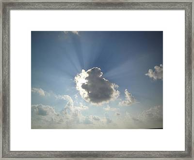 Hidden Monkey  Framed Print by Kathy Lyon-Smith
