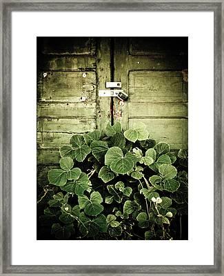 Hidden Nature Framed Print by Jessica Brawley