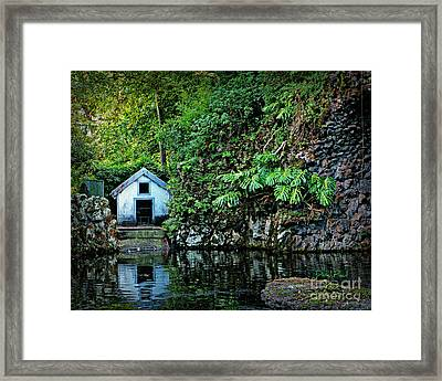 Hide A Way Framed Print