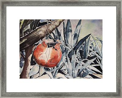 Hide And Seek Framed Print by Regina Ammerman
