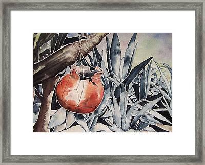 Hide And Seek Framed Print by Regina Ammerman