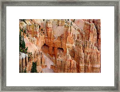 Framed Print featuring the photograph Hideaway  by Vicki Pelham