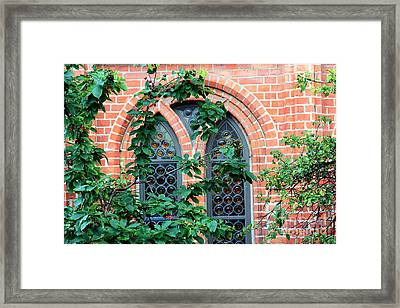 Hiding Behind The Cherry Tree Framed Print by Sophie Vigneault