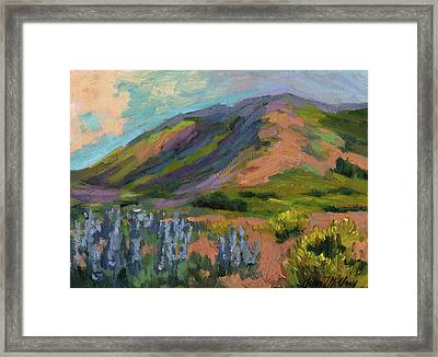 High Desert Spring Framed Print by Diane McClary